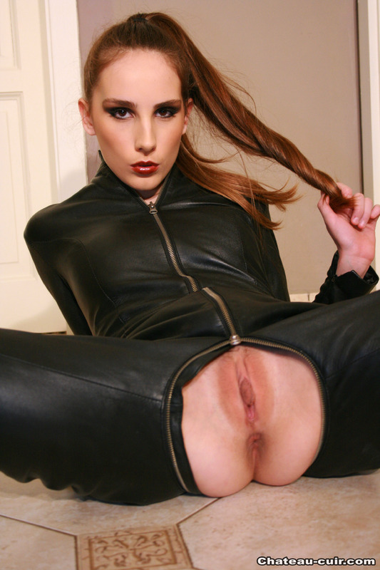 leather cat